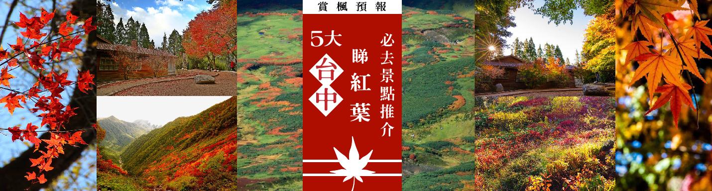 台中紅葉2019