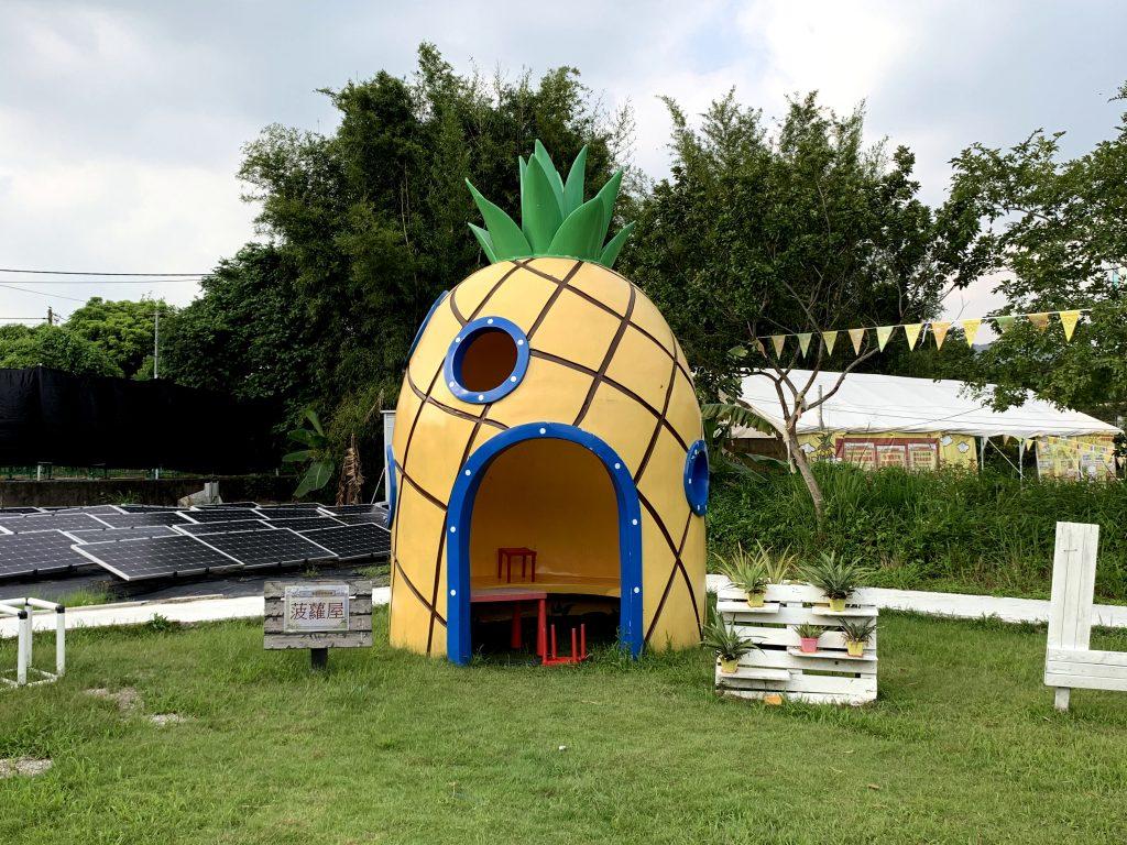 菠蘿園打卡位