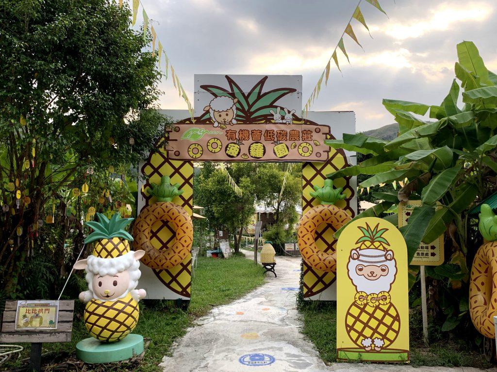 親子郊遊好去處-菠蘿園