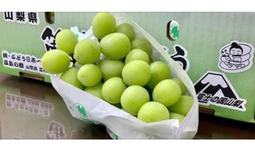 海外水果直送-山梨香印提子