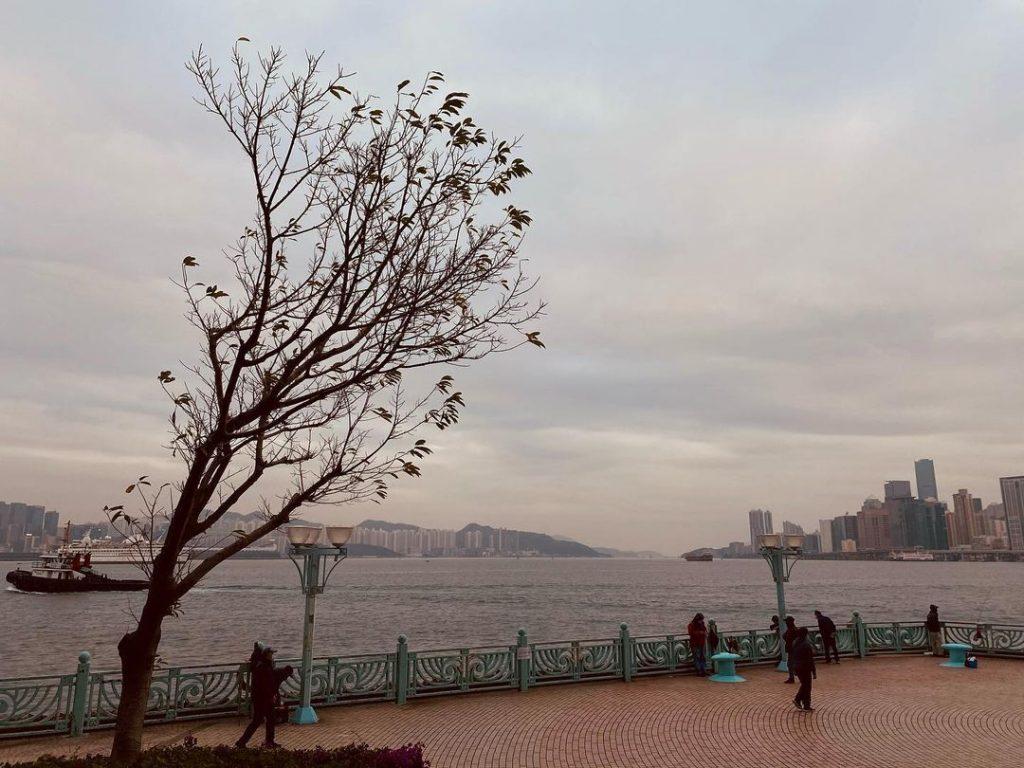 九龍海逸君綽酒店-海雲天-黃埔海濱